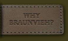 Why Braunvieh?