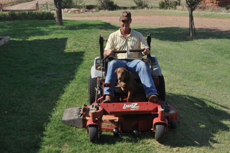 With the right equipment, mowing the lawn is pretty much a game!